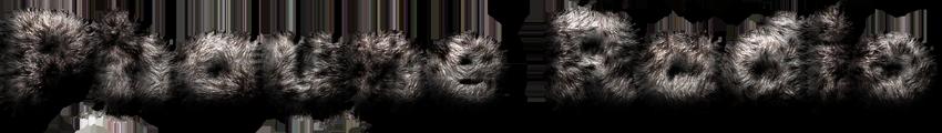 www-logo-phaune