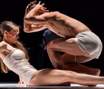 <em>Sunny</em> par la C<sup>ie</sup> Emanuel Gat Dance