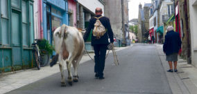 Macadam vacher par la V.O. Compagnie